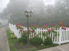 The lamp post and the vibrant roses bring the style of the New England Scalloped Vinyl Picket Fence to life! - All For Garden Driveway Fence, Landscaping Along Fence, Front Yard Fence, Backyard Fences, Outdoor Landscaping, Garden Fences, Vinyl Picket Fence, White Picket Fence, Picket Fences