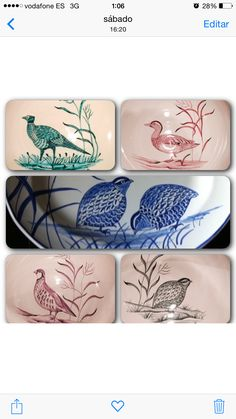 Handpainted Porcelain - Set of Bird Plates by Andrea Zarraluqui
