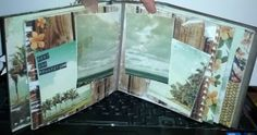Photo Scraps - January 4, 2014 - Kaisercraft Tropical Album with Tracy