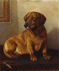 Friedrich Wilhelm Keyl (1823-1871), Dacko, 1871, olio su tela.  Dacko (1859-1871) era il bassotto preferito della Regina Vittoria. Questo ritratto fu dipinto per lei.