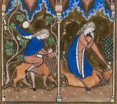 Titre :  Psautier dit de saint Louis.  Date d'édition :  1270-1274  Latin 10525  Folio 56r