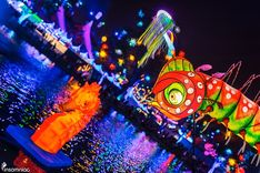 Let's journey into the world of Beyond Wonderland. Figure out what to expect as you adventure down the rabbit hole with Alice in Wonderland. Beyond Wonderland, Alice In Wonderland, Adventure, Check, Adventure Game, Adventure Books