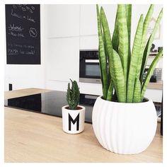 | Kitchen view | Cred: @mieke_kerkhofs #kvikkitchen #kvik Kitchen Views, Planter Pots, White Kitchens, Instagram Posts, Inspiration, Play, Happy, House, Hands