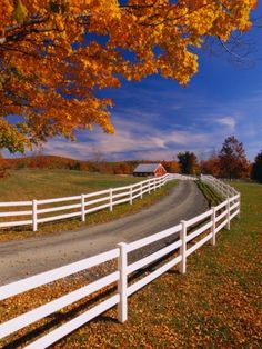 White Wooden Fence Along Farm Photographic Print