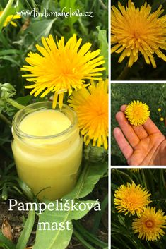 Pampelišková mast Liver Cleanse, Handmade Cosmetics, Edible Flowers, Natural Cosmetics, Herb Garden, Glass Of Milk, Health And Beauty, Herbalism, Food And Drink