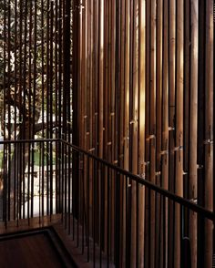 Imagen 5 de 32 de la galería de Casa en Pali Hill / Studio Mumbai. © Helene Binet