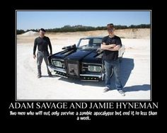 Mythbusters and zombies. http://ibeebz.com