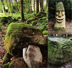 Le sentier des pieds nus propose un voyage presque magique au cœur de la forêt verdoyante