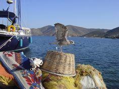 Patmos Island Greece Islands, Boats, Greek, Culture, Sea, Beautiful, Places, Travel, Viajes
