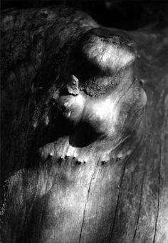 Photography See Me Delphine Sauret