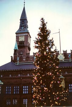 Christmas in Copenhagen, Denmark. Every year the big Christmas tree on Rådhuspladsen is lit the first Sunday in the Christmas month. http://www.visitcopenhagen.com/copenhagen/culture/christmas-copenhagen