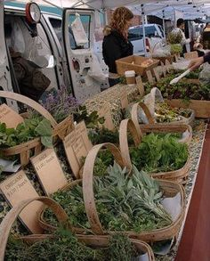 how to sell herbs at farmers market Santa Monica Farmers Market, Farmers Market Display, Market Displays, Farmers Market Stands, Flower Truck, Flower Farm, Vegetable Packaging, Vegetable Stand, Herb Shop