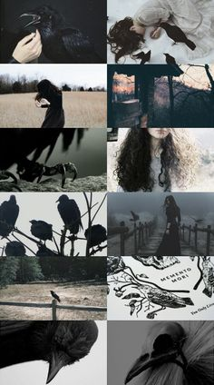 Crow Witch Aesthetic | Writing Inspiration for Authors and Writers | Visual writing prompt #gloomy #fantasy #black