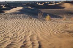 https://flic.kr/p/dvXgVz | Taklimakan Desert | 塔克拉玛干沙漠