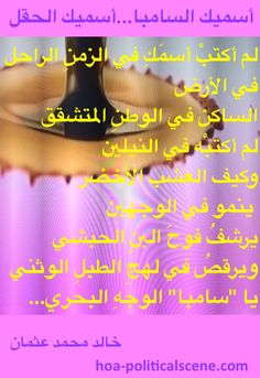 """Snippet of poetry from """"I Call You Samba, I Call You a Field"""", by poet & journalist Khalid Mohammed Osman designed on a beautiful poster."""