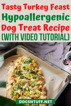 Thinking of what to do with the leftover turkey dinner? Why not turn it into homemade turkey dog treats so that your pooch will enjoy the Thanksgiving spirit too? #dogturkeyrecipes  #veggiedogrecipe #dogfood #dogrecipes Dog Treat Recipes, Dog Food Recipes, Cooking Recipes, Hypoallergenic Dog Treats, Canned Dog Food, Dog Diet, Leftover Turkey, Homemade Dog Treats, Cooking Turkey