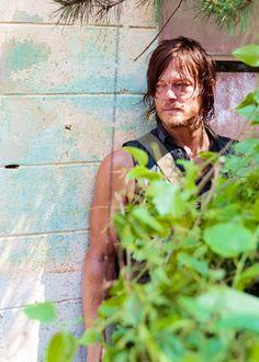 Daryl Dixon ~ The Walking Dead