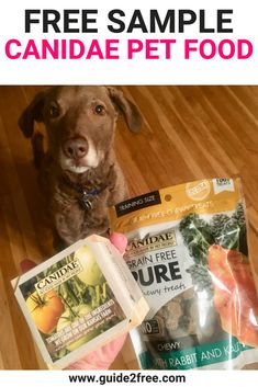 Free Cat Food, Free Sample Boxes, Food Stations, Gift Card Giveaway, Free Gift Cards, Free Samples, Dog Treats, Grain Free, Dog Food Recipes