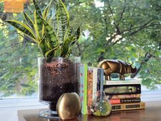 vignette with brass, books and plants