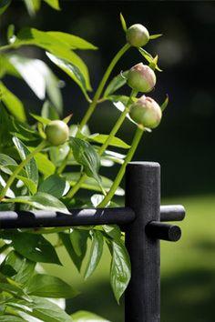 Stöd för buskar Hasselfors garden
