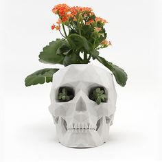 3D-Printed Skull Planter - Cool Hunting