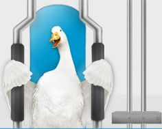 Rocky Theme Song helps push injured Aflac Duck in 'Physical Therapy' commercial.