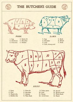 Poster - Butcher's Guide i gruppen Dekoration / Tavlor / Skyltar / Posters hos Reforma Sthlm (WRAP_MEAT)