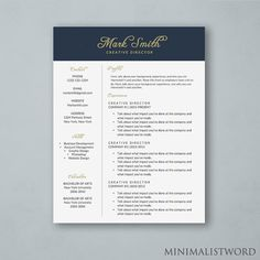 Resume Template With Blue Sidebar Microsoft Word Doc Instant