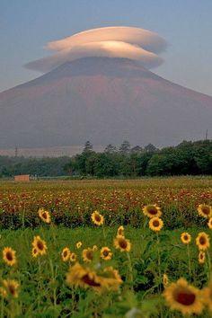 ❝ Monte Fuji con una nube de paraguas, Yamanashi, Japón - Foto de shinichiro OSAKA en Flickr ❞ ↪ Vía: Entretenimiento y Noticias de Tecnología en proZesa