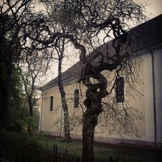 Templomkert #oroshaza #oroshaza_ma #magyarorszag #hungary #galaxys 2012 apr 20 Homeland, Hungary, Instagram Posts