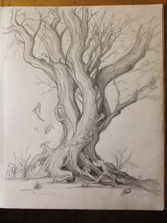 Fea Tree by GriffinsJoy on DeviantArt Tree Drawings Pencil, Pencil Art, Tree Sketches, Art Drawings Sketches, Nature Sketch, Graphite Drawings, Realistic Drawings, Drawing Techniques, Tree Art