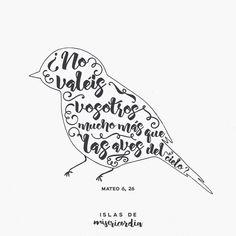 """""""Mirad las aves del cielo, que no siembran, ni siegan, ni recogen en graneros; y, sin embargo, vuestro Padre celestial las alimenta. ¿No valéis vosotros mucho más que ellas?"""" (Mateo 6, …"""
