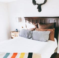 😍 Loving this cozy space including our faux moose head. Makes us want to crawl right back into bed. Moose Head, Moose Antlers, Moose Animal, Faux Taxidermy, Custom Paint, Wall Mount, Minimalism, Resin, It Cast
