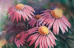 Pictures of purple coneflowers painted on rocks - Yahoo Image Search Results
