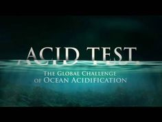 This groundbreaking NRDC documentary explores the startling phenomenon of ocean acidification, which may soon challenge marine life on a scale not seen for tens of millions of years. The film, featuring Sigourney Weaver, originally aired on Discovery Planet Green.