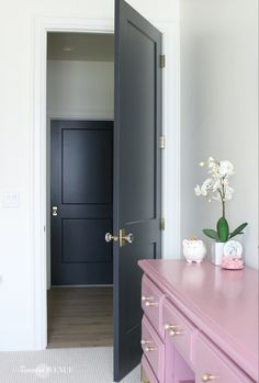 White Interior with Dark Doors - Remington Avenue - - If you want to add sophistication and class to your interior, paint your doors dark! Today I'm sharing my white interior with dark door accents. Interior Modern, Dark Interior Doors, Dark Doors, The Doors, Interior Paint, Interior Door Colors, Door Design Interior, Interior Livingroom, Dark Interiors