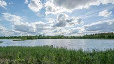 Pohjois-Savon luonnonsuojelupiiri osti helmikuussa Rastunsuon lintujärven Vapolta. Nyt kesän korvalla piirihallitus matkusti paikan päälle katsomaan, mitä olikaan tullut ostetuksi.