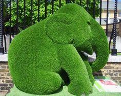 A voir de superbes sculptures végétales forme éléphants : http://www.nafeusemagazine.com/Superbes-Sculptures-vegetales-elephants_a1022.html