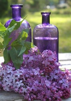 lilacs- can symbolize first love, innocence, protection, and fresh starts.  In a Witches' Garden they would be for protection.