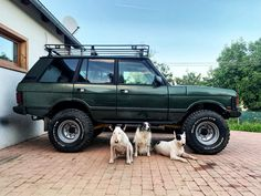 #rrc #rangeroverclassic #rangerover #classic #softdash #salisbury #300tdi #offroad #dogs #bullterrier Best Suv, Range Rover Classic, Land Rovers, Toy Trucks, Amazing Cars, Bull Terrier, Campers, Offroad, Discovery