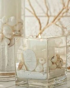 Seashells in muted colours can be beautiful on their own when placed in glass jars and put on display.