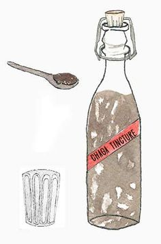 Chaga Tincture - (DIY) Recipes, Guides For Double Extract (Step-by-Step) Herbal Tinctures, Herbalism, Natural Medicine, Herbal Medicine, 100 Proof Vodka, Health Benefits Of Mushrooms, Cheap Vodka, Salve Recipes, Medicine Book