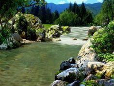 free Nature-Pics - Google Search