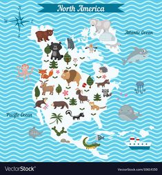 Cartoon map of north america continent with different animals. colorful cartoon illustration for children and North America Continent, North America Map, America City, Animal Crafts For Kids, Animals For Kids, Infant Activities, Activities For Kids, Montessori, Geography For Kids