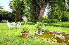 Elizabeth Locke's Clayhill, VA garden