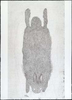 Kiki Smith. Untitled from White Mammals. 1998