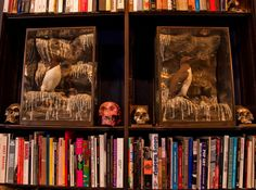 Nestled in the bookshelves in the library are penguin dioramas from John Norwood Antiques and skulls sculpted by Damien Hirst (silver) and Andreas von Zadora-Gerlof (pink). Home Library Design, Design Your Home, Dark Interiors, Wood Interiors, Library Shelves, Bookshelves, Masculine Interior, Art Archive, Interior Inspiration
