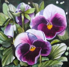 paintings in violet images | Violet Pansies , realistic Pansy flower painting watercolor, violette ...