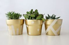 Want to get creative with flower pots? Here are 60 creative DIY planters that you can try as your next craft project. Want to get creative with flower pots? Here are 60 creative DIY planters that you can try as your next craft project. Painted Plant Pots, Painted Flower Pots, Pots D'argile, Clay Pots, Indoor Planters, Diy Planters, Planter Ideas, Outdoor Flowers, Gold Diy