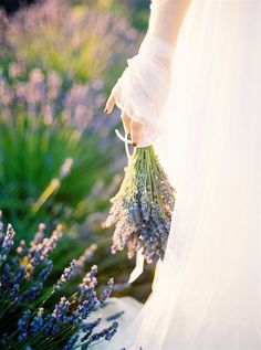 Lavender Field Couples Shoot in Spain by Natalia Ortiz Wedding Planner Spain Wedding Abroad, Lavender Fields, Beautiful Couple, Couple Shoot, Purple Wedding, Backdrops, Spain, Wedding Inspiration, Anniversary